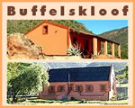 Buffelskloof Guest House Accommodation in Calitzdorp