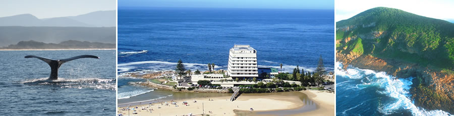 Plettenberg Bay Accommodation and Tourist Guide